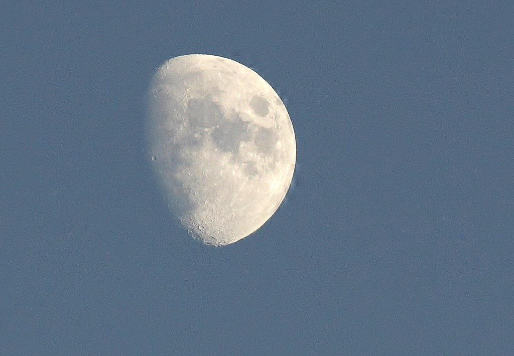 Waxing gibbous moon (7)