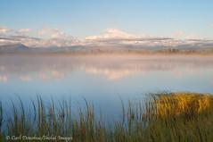 Mount Sanford and reflection, Wrangell St. Elias National Park and Preserve, Alaska. (Skolai-Images) Tags: carldonohueskolaiimageswrangellsteliasnationalpark mountsanfordlandscapesscenicshorizontalsalaska