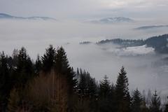 20100109-IMG_6256.jpg (Rafal Kubik) Tags: winter snow mountains forest landscape beskidy beskidzywiecki