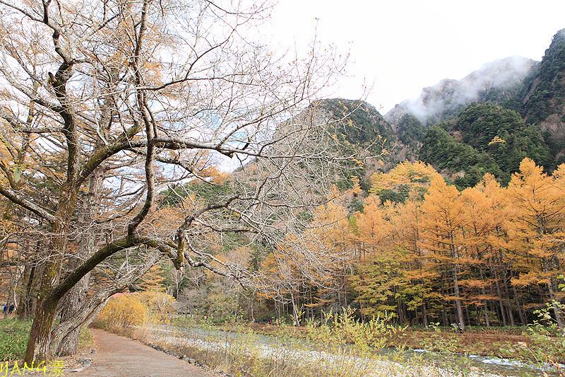 上高地(河童橋)