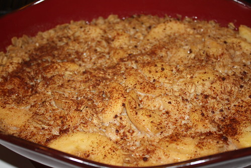 Apple and Oats Breakfast Pudding 4