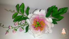 Peony and sweet peas (Albena Bojidarova) Tags: shugar flowers gumpaste cake decorating topper peony sweet peas