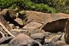 Cachoeira de Socorro, São Paulo (Macapuna) Tags: turismoecológico serradamantiqueira estadodesãopaulo cidadesbrasileiras cidadedesãopaulo sãopaulo sampa sp brazil brasil gettyimagesbrasil nikon nikond90 sudeste southeast latinamerica américalatina southamerica américadosul américa carlosmacapuna macapuna cachoeira cacho