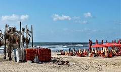 On the Beach (Esther Spektor - Thanks for 12+millions views..) Tags: beach sea israel telaviv firshmanbeach tree umbrella chair people sand sky cloud estherspektor canon