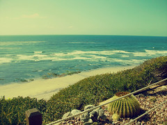 Wish you were here (putanginacupnstir) Tags: ocean cliff seascape waves view oceanview sandiegoca mariaganacias putanginacupnstir sandiegoselfrealizationfellowshipmeditationgardens