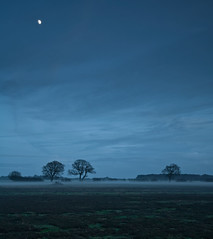 Dunwich winter mist (Mark Wills (Wills_m)) Tags: winter moon mist suffolk heath canon5d dunwich ef 24105mm