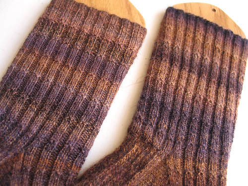 cmf bfl sr socks legs