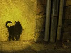 quiet street (unruhe) Tags: barcelona street art canon ixus horta unruhe quietstreet 100is