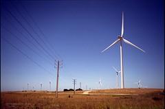 Wind Power (Adam Dimech) Tags: film windmill field rural iso100 power wind superia farm australia pole electricity environment fujifilm sa southaustralia generation turbine windfarm reala paddock greenpower stobiepole lakebonney tantanoola stobie superiareala lakebonneywindfarm