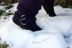 IMG_6491 (amcmillian2009) Tags: snow purple boots