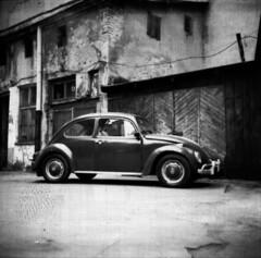 Volkswagen Beetle (rygielski.piotr) Tags: bw 6x6 volkswagen lubitel mf lodz fomapan100 fomapan