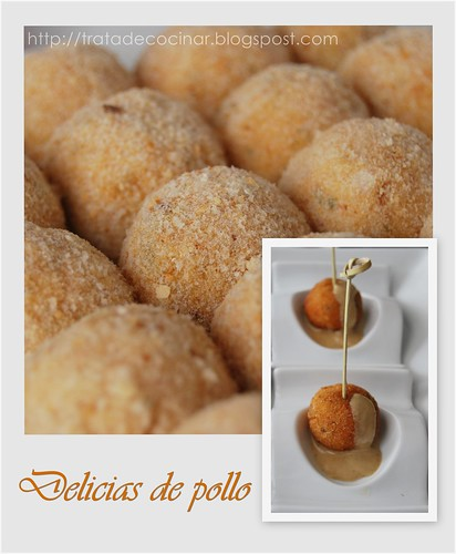 Delicias pollo0 TC
