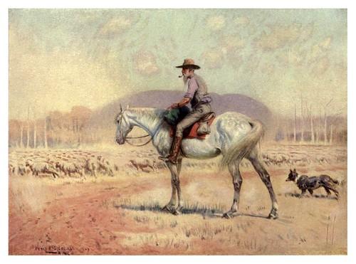 014-Con el ganado de ovejas-Australia (1910)-Percy F. Spence
