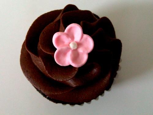 cupcakechocolatejamie