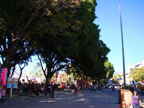 Parque de Tehuacán, Pue. (5)
