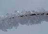 Winter 2010 in Trakai (micha001) Tags: winter ice lithuania trakai lietuva litauen eiskristall icecristal