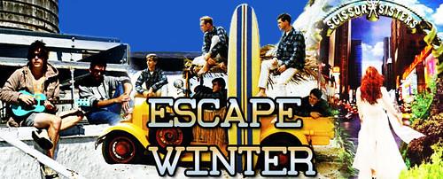 VidZone Escape Winter