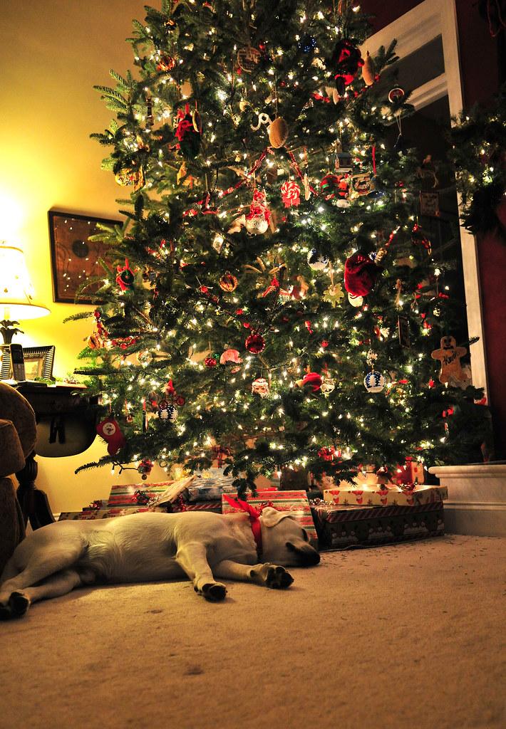 christmas_335