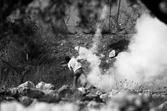 i lanciatori di pietre in bianconero (rosa_pedra) Tags: palestina manifestazione