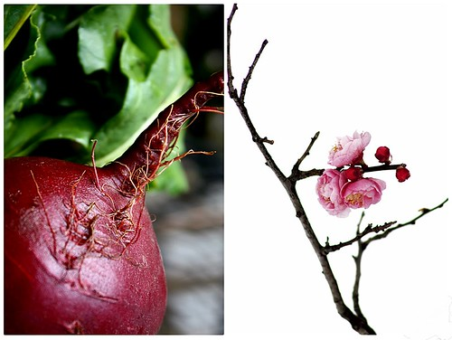 Beet and Blossom Duo
