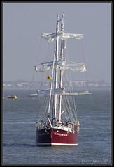 T.S. Caroline Allen (leightonian) Tags: uk island boat sailing unitedkingdom isleofwight solent gb tallship isle cowes wight iow bluesail