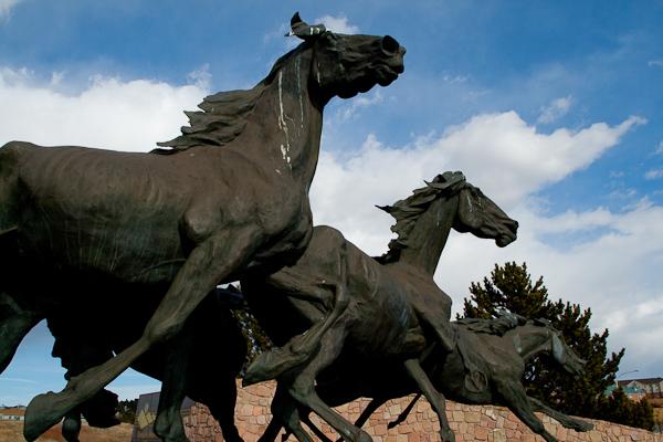 Briargate Mustangs