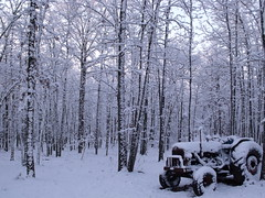snow 2.10 096 (stevenbr549) Tags: winter snow tractor ford georgia major farm country super southern 5000 fordson snow210