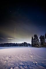 Night walk (SakariM) Tags: winter sky nature field night clouds forest finland stars nikon long exposure tokina mm f28 d300 sakari 1116 mkel flickraward flickraward5