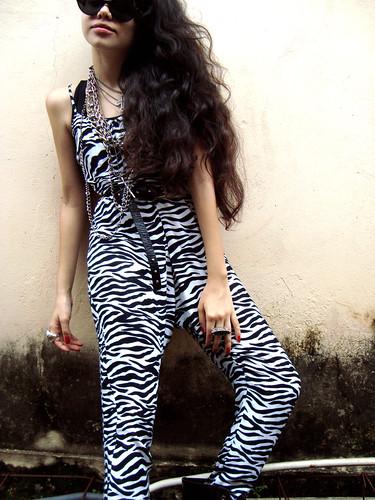 I'm a Zebra
