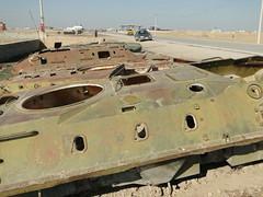 DSC09246 (huxley1312) Tags: afghanistan sharif mazare
