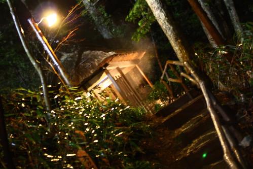 山の湯@武蔵野別館(箱根)