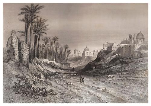 014-Elche-Voyage pittoresque en Espagne et en Portugal 1852- Emile Bégin