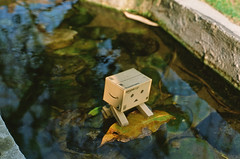 () Tags: film toy toys amazon taipei danbo  contaxnx  danboard     contaxn5014