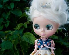 Sugar Plum Fairy 1/52