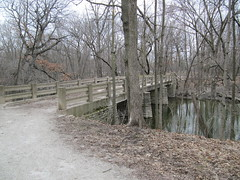 Harms Woods Bridge (amoran773) Tags: bridge trees woods cookcountyforestpreserve northbranchchicagoriver