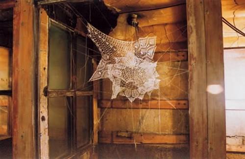 doily spider web