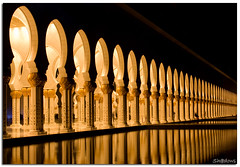Golden Pillars (Sh@dows) Tags: nightphotography architecture night canon photography lights photo shadows uae pillar mosque abudhabi pillars shdows sarin canon24105f4isl 450d canon450d sarinsoman sheikhzayedmosque sheikhzayedgrandmosque goldenpillars