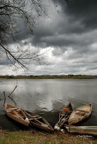boat roundup