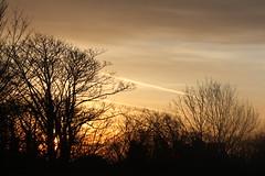 Check It (CJ Isherwood) Tags: morning trees sunset sun silhouette set clouds sunrise trail rise vapour vapor 102365