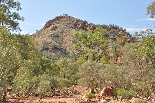 approaching mount gee from the ridgetop tour