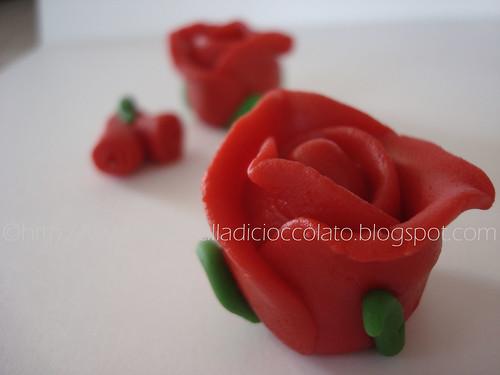 Rose pdz