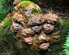 William Ricketts Sanctuary - Olinda, Dandenong Ranges, Victoria (Black Diamond Images) Tags: sculpture tourism australia melbourne victoria yarravalley dandenong ranges ferns aboriginal aboriginalart olinda dandenongs dandenongranges williamricketts treeferns dicksoniaantarctica eucalyptusregnans bdi aboriginalsculpture australiangarden tourismvictoria williamrickettssanctuary beautifulgardens cyatheaaustralis blackdiamondimages greatgardens australiangardens magnificentgardens indigenoussculpture victoriantourism australianaboriginalsculpture bestgardens
