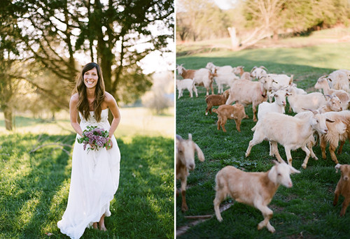 farmfresh2 via oncewed