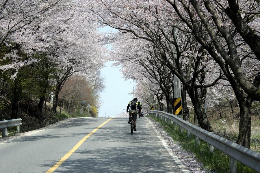 Road(2)