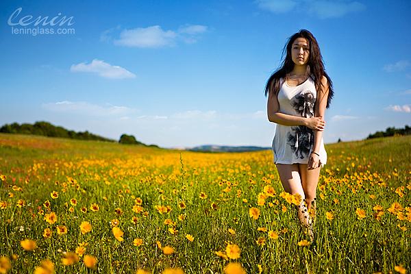 IMAGE: http://farm5.static.flickr.com/4063/4575066112_50766d6fe6_o.jpg