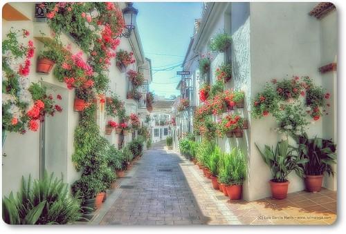 La calle de mis sueños - Street of my dreams