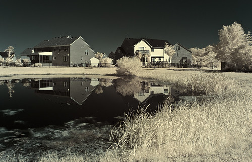 Infrared Backyard - Virginia Beach