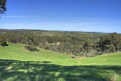 Near Clarendon, South Australia (nickant44) Tags: trees canon australia farmland clarendon sa 1855mm pastoral southaustralia hdr 40d