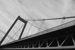Rheinbrcke s/w (flikrflak) Tags: bridge river rhine kleve emmerich rheinbrcke