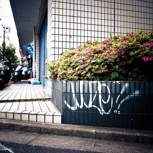Moze Tag, Wall, Kasai Tokyo